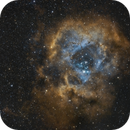 Rosette Nebula bicolor generated from RGB image,                                pete_xl