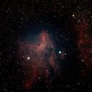 Pelican Nebula, No Stacking,                                taylorhogan