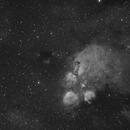 Cat's Paw Nebula - H-alpha,                                Ron