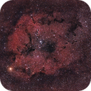 Elephant's Trunk Nebula,                                drivingcat