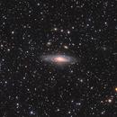 NGC 7331,                                jeff