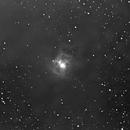 NGC 7023 Iris Nebula,                                Connolly33