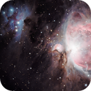 M42 and M43,                                Anca Popa