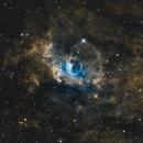Bubble Nebula,                                Crisan Sorin