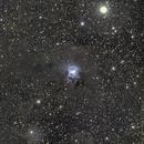 Iris Nebula - LRGB,                                Rodolphe Goldsztejn