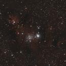 NGC2264,                                dagar