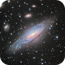 NGC7331 and Deer Lick Group,                                sydney