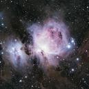 M42 Orion Nebula,                                Dominik Wittmer