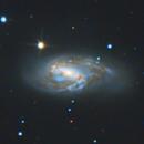 Triplet du Lion NGC3628 M65 M66,                                Joel85