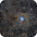 The IRIS NGC 7023 and the Ghost Nebula Sh2-136,                                Stefan-Harry-Thrun