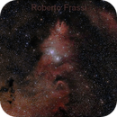 The Christmas Tree (NGC2264),                                Roberto Frassi