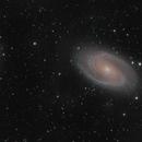 M81 M82,                                matthiasC