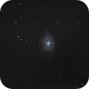 NGC 7793,                                Mark Sansom