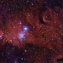 Cone Nebula and Friends,                                legova