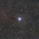 NGC 7023, Iris Nebula, Cep,                                Vladimir Machek