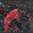Jellyfish Nebula IC 443,                                Remi Lacasse