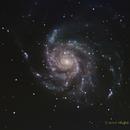 M101 The Pinwheel Galaxy,                                NewLightObservatory
