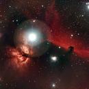 Horsehead Nebula,                                cajusor