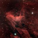 Pelican Nebula - IC 5070,                                urmymuse