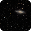 Deer Lick Group and Stephan's Quintet,                                Frank Kane