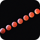 3–4 March 2007 Total Lunar Eclipse,                                Giuseppe Donatiello
