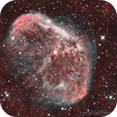 NGC6888 Crescent Nebula in Narrowband Bicolour Palette,                                Kayron Mercieca