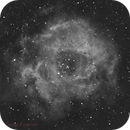 NGC2244 en Ha,                                Daniel Fournier