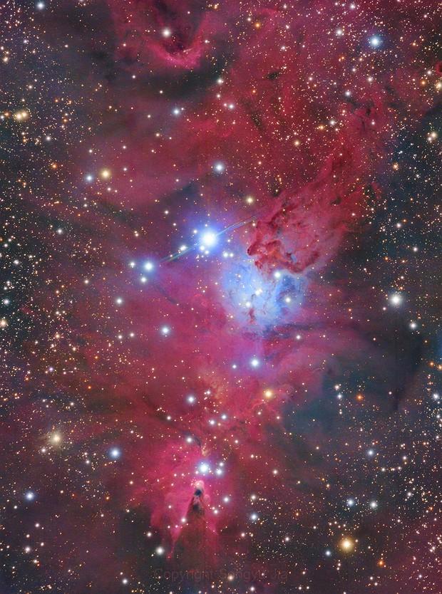 NGC2264,                                Songyu Jia-贾淞寓
