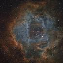 NGC 2237 Rosette Nebula HST,                                Stan Westmoreland