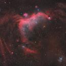 The Seagull Nebula - IC 2177 - 3 Panel Mosaic,                                Matt Harbison
