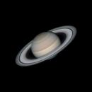 Saturn under superb seeing,                                Michael Wong