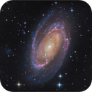 M81 L-RGB-Ha,                                sky-watcher (johny)