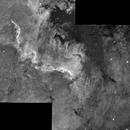 NGC 7000,                                Piero Venturi