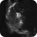 193'000 stars and a 108 pannels mosaic for the Orion Challenge ,                                David Lindemann