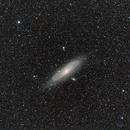 M31,                                Ettore Guido Basiglio Ribaudo