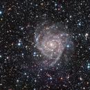 IC 342 RGB - The Hidden Galaxy,                                Zheng Fu