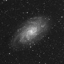 M33 Luminance,                                LAMAGAT Frederic