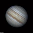 Jupiter - August 11, 2019,                                Fábio