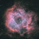 The Rosetta Nebual (Caldwell 49) HOO Palette,                                George Clayton Yendrey