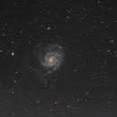 M101 The Pinwheel Galaxy,                                Dsmith79