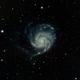 Pinwheel / M101 with Ha added,                                Frank Kane