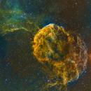 Jellyfish Nebula, IC 443,                                Ricardo Pereira