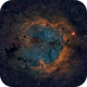 IC1396 - Elephants Trunk - Widefield,                                Bjoern Schmitt