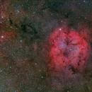 IC 1396,                                Toshiya Arai