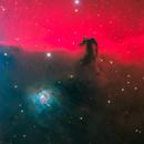 Another Classic in Orion : Horsehead Nebula,                                José Joaquín Pérez