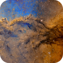 NGC 6188 Panorama,                                Leslie Rose