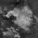 NGC7000,                                Maxime Delin