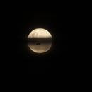 Moon and bat,                                Geoff