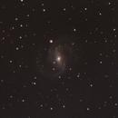 NGC 6952, NGC 6951,                                David Newbury