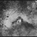 IC1284 and Sagittarius Star Cloud,                                Newton Cesar Florencio